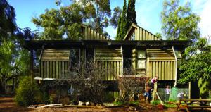 The Treehouse Arlington