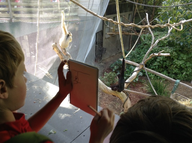 Lisa Roet Preshil Melbourne Zoo